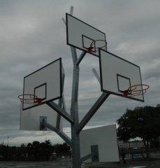arbre basket